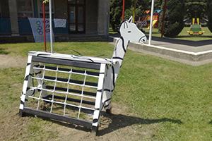 Z3 – Zebra